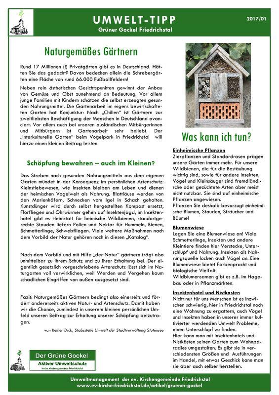Umwelttipp vom Grünen Gockel 2017-1